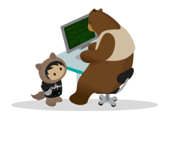Salesforce trailblazers Nétive service desk